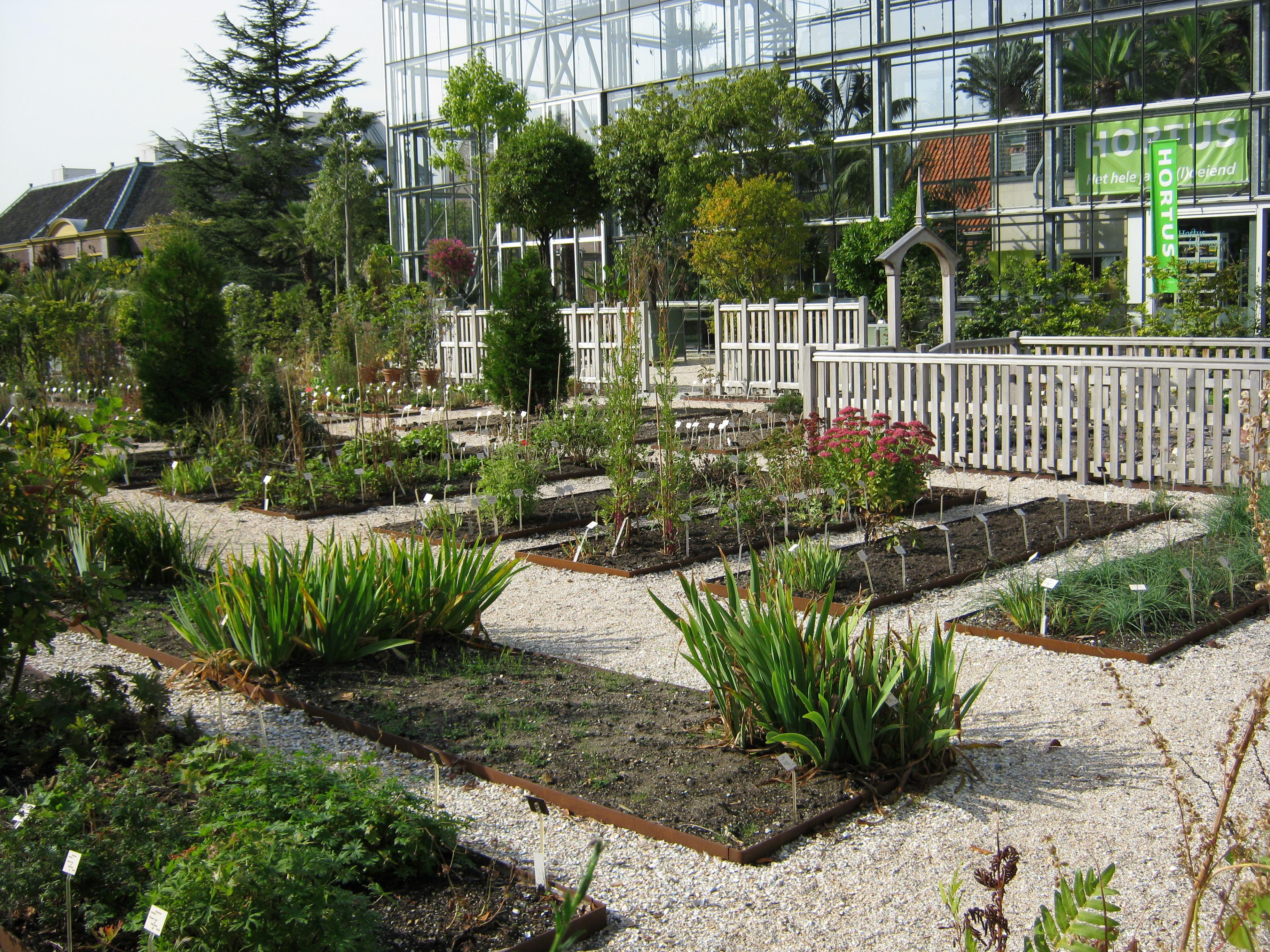Botanische Tuin Leiden : Reconstructie clusiustuin hortus botanicus te leiden rod or advies